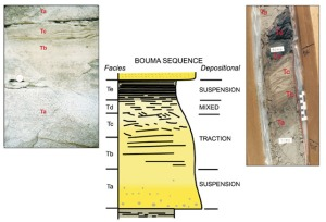 Gambar 1. Ilustrasi Bouma (1962) Sequence pada singkapan, terdiri dari Ta (massive to size-graded sand), Tb (parallel-laminated sand) dan Tc (ripple laminated sand). Bouma Td (massive siltstone to mudstone) dan Te (claystone) yang telah mengalami pelapukan. Ta sebagai graded sand, biasanya ukuran butir berkurang keatas dari Ta ke Te.