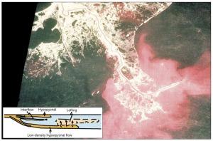Gambar 4. Foto udara Infrared yang menunjukkan penyebaran sedimen fine-grained yang berasal dari Sungai Mississipi. Gambar inset menunjukkan tipe-tipe aliran yang terjadi ketika river-borned sedimen masuk ke lingkungan laut. Aliran Hyperpycnal terbentuk pada saat konsentrasi sedimen yang diendapkan dalam freshwater melebihi 42 kg/m3. After Mulder et al., (2003).